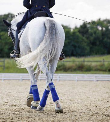 Hinging rider – Láthatatlan segítség program