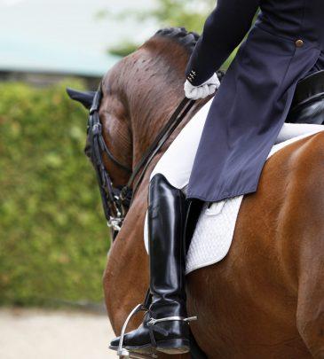 Hinging rider- 12 hetes tréning az alapoktól